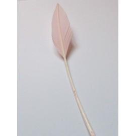 Arrowhead - Baby Pink