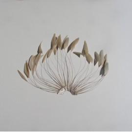 Coque Fan - Almond