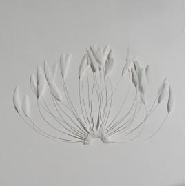 Coque Fan - Ivory