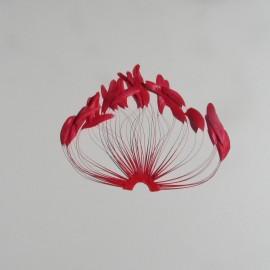Coque Fan - Scarlet