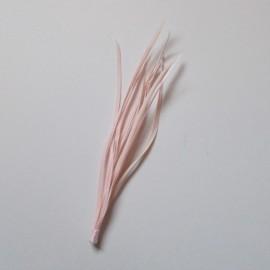 Goose Biot Bunch - Baby Pink