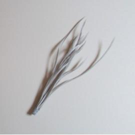 Goose Biot Bunch - Silver