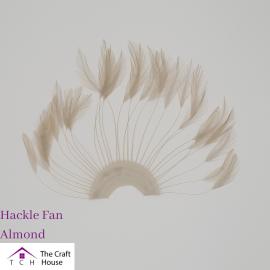 Hackle Fan Almond