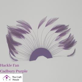Hackle Fan Cadbury Purple