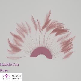 Hackle Fan Rose
