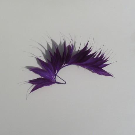 Medium Coque Feather Mount